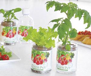 育てるグリーンペット ベジタブル