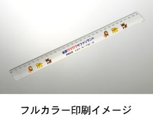 安全定規30cm