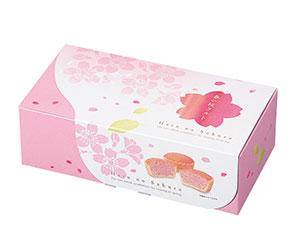 春の桜タルト5個入