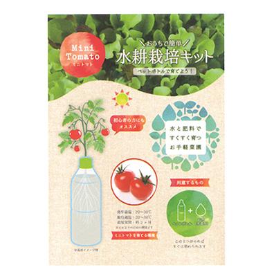 ペットボトル水耕栽培セット