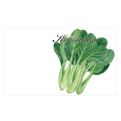 横型イラスト野菜の種子1個