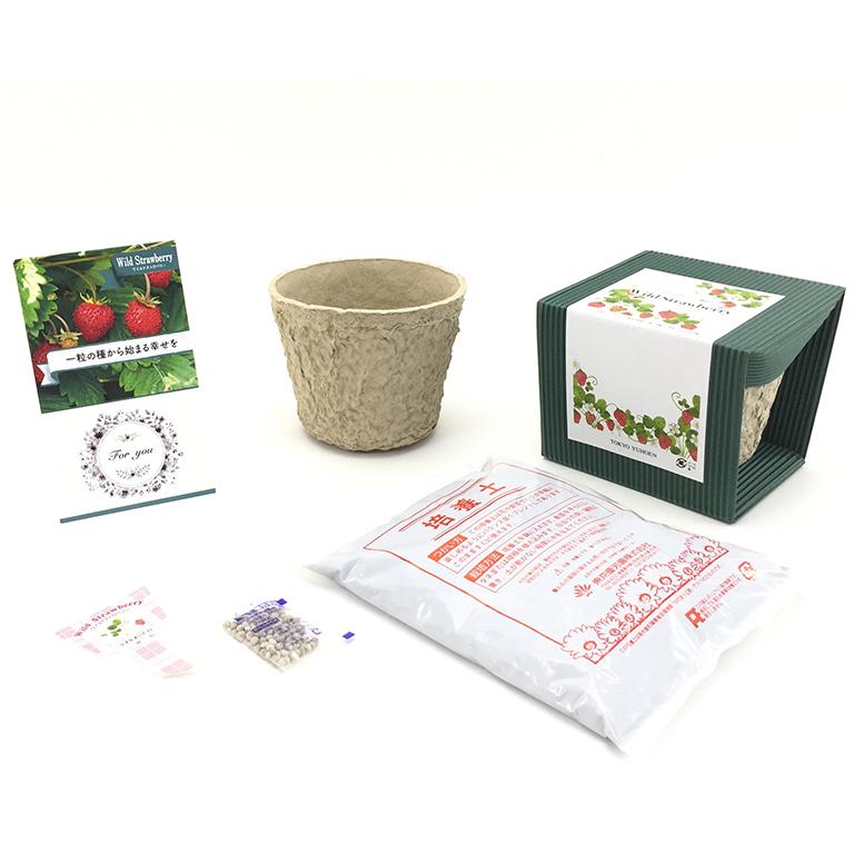 ワイルドストロベリー栽培セット
