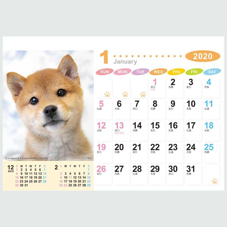 カレンダー2020 ラブリーフレンズ(犬・猫)