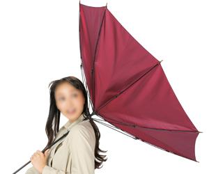 耐風傘1本